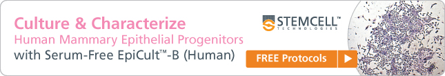 Culture and Characterize Human Mammary Epithelial Progenitors with Serum-Free EpiCult-B (Human)