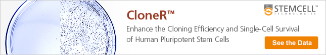 CloneR for Enhancing the Cloning Efficiency and Single-Cell Survival of hPSCs