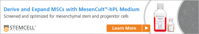 Derive and Expand MSCs in MesenCult™-hPL Medium. Learn more.