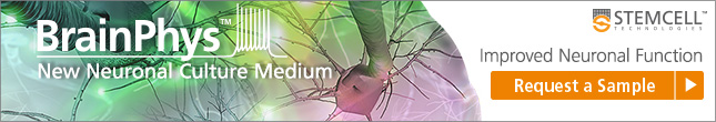 Request a Sample for Improved Neuronal Function with BrainPhys™ Neuronal Medium