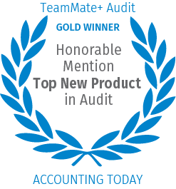 Honorable Mention Top New Product in Audit
