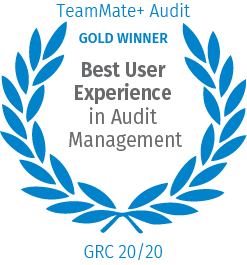 Best User Experience in Audit Management