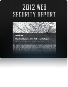 2012 web security Report