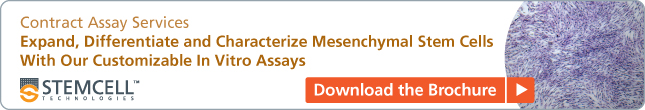 Contract Assay Services: Expand, Differentiate and Characterize Mesenchymal Stem Cells With Our Customizable In Vitro Assays. Download our FREE Brochure.