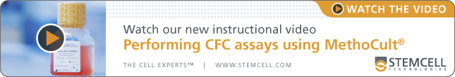 Watch The Video: Performing CFC Assays Using MethoCult™