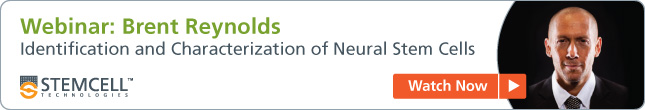 Webinar: Brent Reynolds on Identification and Caracterization of Neural Stem Cells