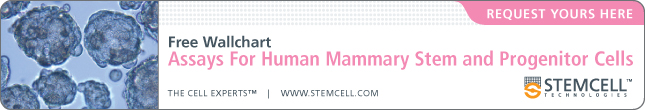 Free Wallchart | Assays for Human Mammary Stem and Progenitor Cells