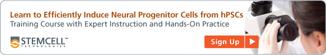 Learn to Efficiently Induce Neural Progenitor Cells for Human ES cells and iPS cells. Training Course with Expert Instruction and Hands-On Practice
