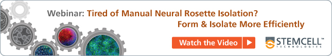 STEMdiff Neural Induction Medium Webinar - Recorded Session