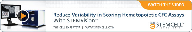 Watch The Video: Reduce Variability In Scoring Hematopoietic CFC Assays With STEMvision™.