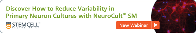 [New Webinar] Discover How to Reduce Variability in Primary Neuron Cultures with NeuroCult SM
