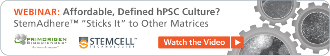 Webinar: Affordable, Defined hPSC Culture?  Watch the video now.